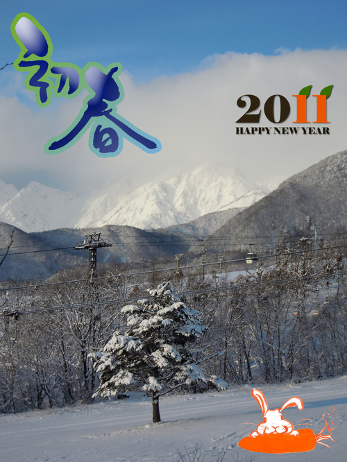2011new_year